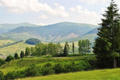 Piękny krajobraz góry i lasy Zdjęcia Stock