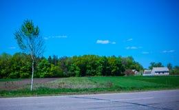 Piękny krajobraz i osamotniony drzewo Fotografia Stock