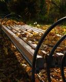 piękny krajobraz jesieni Zdjęcie Stock
