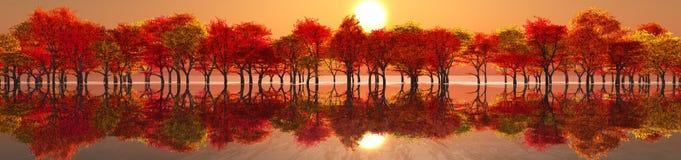 piękny krajobraz jesieni Zdjęcia Royalty Free