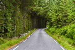 Piękny krajobraz Norwegia, Scandinavia, natura Obrazy Royalty Free