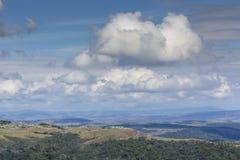 Piękny krajobraz osobliwie dla Granu Sabana, Venezue - Zdjęcia Royalty Free
