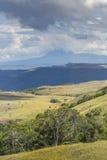 Piękny krajobraz osobliwie dla Granu Sabana, Venezue - Zdjęcie Stock