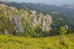 Piękny krajobraz w Ciucas górze, Rumunia Obrazy Stock