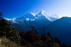 Piękny krajobraz w Himalays, Annapurna region, Nepal Zdjęcie Stock