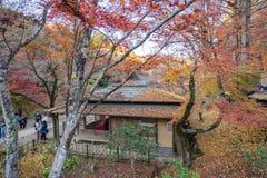 Piękny krajobraz w jesieni przy Korankei, Japonia Zdjęcia Royalty Free