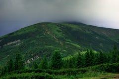 Piękny krajobraz w Karpackich górach, Ukraina Zdjęcia Royalty Free