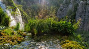 Piękny krajobraz w Plitvice jezior parku narodowym Zdjęcie Royalty Free