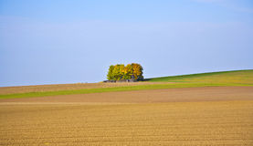 Piękny krajobraz z akrem Fotografia Royalty Free