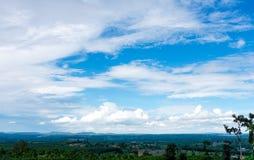 Piękny krajobraz z drzewami i niebem Plenerowy na letnim dniu Obraz Stock