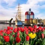 Piękny krajobraz z kwiatami na tle statek o Obraz Stock