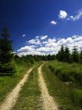 piękny krajobrazowy lato Zdjęcie Royalty Free