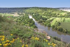 piękny krajobrazowy winnica Obrazy Royalty Free