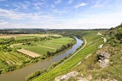 piękny krajobrazowy winnica Fotografia Stock