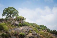 Piękny krajobrazu pasmo górskie Fotografia Royalty Free