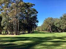 piękny kursu golfa Zdjęcia Stock