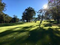 piękny kursu golfa Zdjęcie Royalty Free