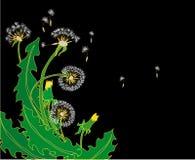 piękny kwiat ilustracja wektor