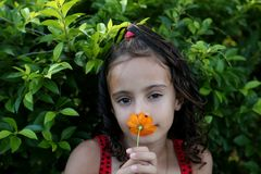 piękny kwiatu dziewczyny target571_0_ Zdjęcie Stock