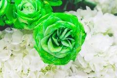 Piękny kwiatu ogród Fotografia Royalty Free