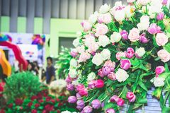 Piękny kwiatu ogród Obrazy Royalty Free