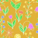Piękny kwiatu set, Wektorowy bezszwowy wzór Fotografia Royalty Free