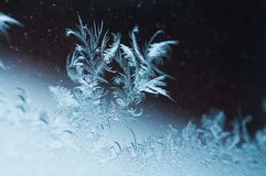 Piękny lód kwitnie na okno Fotografia Royalty Free
