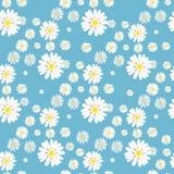 Pi?kny lata t?o z stokrotka kwiatami bezszwowy kwiecisty wzoru r?wnie? zwr?ci? corel ilustracji wektora ilustracja wektor