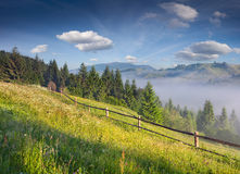 Piękny lato krajobraz Zdjęcia Royalty Free