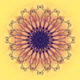 Piękny mandala kwiat Ornamentacyjny round kwiecisty przedmiot Obraz Stock