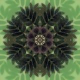 Piękny mandala kwiat Ornamentacyjny round kwiecisty przedmiot Fotografia Stock