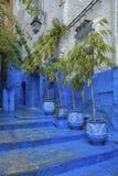 Piękny Medina Chefchaouen, Maroko Obraz Stock