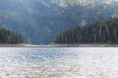 Piękny mistyczny Czarny jezioro, Durmitor obywatel Fotografia Royalty Free