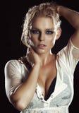 piękny model Fotografia Stock