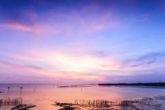 Piękny mroczny sylwetka zmierzch przy tropikalnym morzem. Obraz Royalty Free