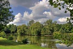 Piękny natura krajobraz Obrazy Stock