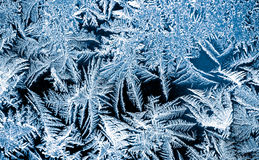 Piękny natura wzór na frosted szkle Fantazi sztuki processin Zdjęcia Stock