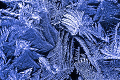 Piękny natura wzór na frosted szkle Fantazi sztuki processin Obrazy Royalty Free