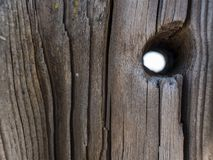 Pi?kny naturalny suchy drzewny baga?nik z dziur? Drewniany t?o Drewniana tekstura obrazy royalty free