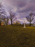 Piękny nieba drzewo Zdjęcie Royalty Free
