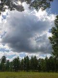 piękny niebieskie niebo i bufiaste chmury zdjęcie royalty free