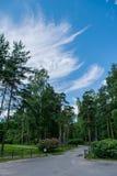 Piękny niebieskie niebo z chmurami Obrazy Royalty Free