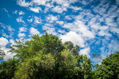 Piękny niebo Zdjęcia Royalty Free