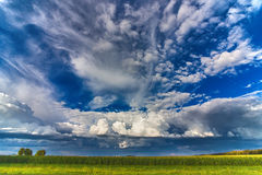 Piękny niebo z chmurami nad polem kukurudza Zdjęcie Stock