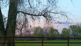 Piękny Nowy - Mexico zdjęcie royalty free