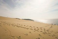 Piękny obrazek wysoki sanddune Europe z sunse Zdjęcia Royalty Free