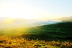 Piękny obszar trawiasty (24) Fotografia Royalty Free
