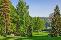 Piękny ogród z zielonym gazonem i relaksuje miejsce Obrazy Royalty Free