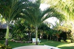 piękny ogrodowy kurort zdjęcia royalty free