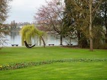 Piękny park na jeziorze Bodensee Fotografia Royalty Free